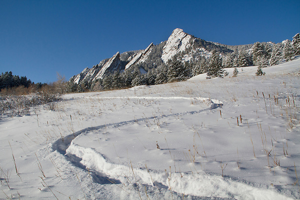 Snowshoe tracks at Chautauqua Park, Boulder, Colorado, .  John leads private photo tours in Boulder and throughout Colorado. Year-round. .  John leads private photo tours in Boulder and throughout Colorado. Year-round Boulder photo tours.