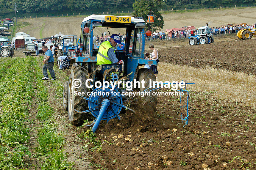 Potato digger demonstration at the Co Down Traction Engine Club 33rd Rally at Mount Stewart, Newtownards. 200408145398...Copyright Image from Victor Patterson, 54 Dorchester Park, Belfast, UK, BT9 6RJ..Tel: +44 28 9066 1296.Mob: +44 7802 353836.Voicemail +44 20 8816 7153.Skype: victorpattersonbelfast.Email: victorpatterson@mac.com.Email: victorpatterson@ireland.com (back-up)..IMPORTANT: If you wish to use this image or any other of my images please go to www.victorpatterson.com and click on the Terms & Conditions. Then contact me by email or phone with the reference number(s) of the image(s) concerned.