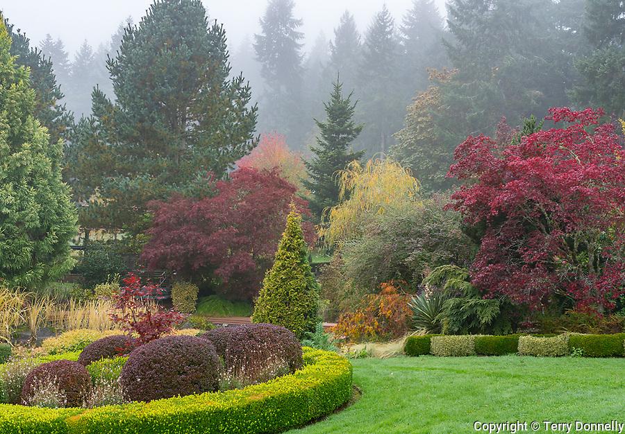 Vashon Island, Washington:<br /> Froggsong gardens, late fall in fog