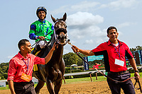 SARATOGA SPRINGS, NEW YORK - AUG 26:  By The Moon#4, ridden by Rajiv Maragh , wins the Ballerina at  Saratoga Race Course on August 26, 2017 in Saratoga Springs, New York.(Photo by Sue Kawczynski/Eclipse Sportswire/Getty Images)