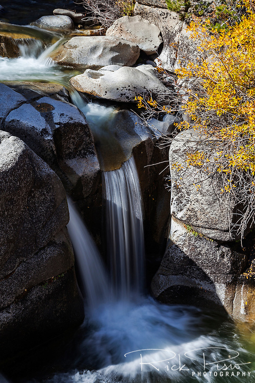 Water flows over a cascade on Leavitt Creek in Mono County, California.