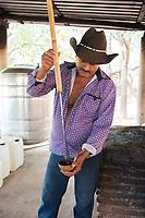 Testing for alchohol content. Felix Garcia a Maestro Mezcalero at his ranch and distillery in El Potrero, Oaxaca, Oaxaca, Mexico