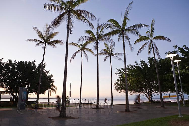 Cairns Esplanade at twilight.  Cairns, Queensland, Australia