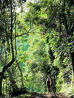 A woman hiking through the forest near Kilauea, Kauai