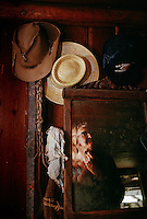 Reflected in the mirror while shaving, elderly bachelor William McKinley Crews has lived his entire life near the Okefenokee Swamp. <br /> Crews leads a reclusive life on his 160-acre farm in Moccasin Swamp. Having no running water, electricity or telephone. Crews lives in isolation with 14 cats and four heifers.