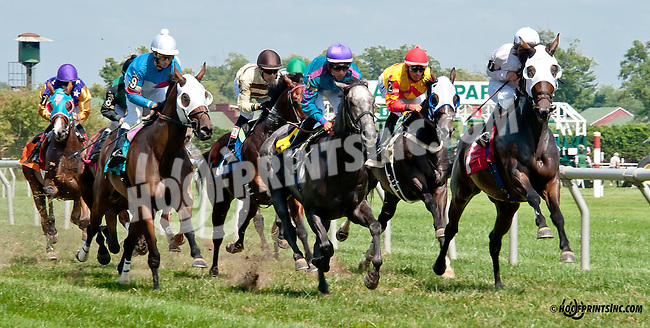 Key Decision winning at Delaware Park on 8/25/14