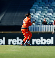 2nd November 2019; Western Australia Cricket Association Ground, Perth, Western Australia, Australia; Womens Big Bash League Cricket, Perth Scorchers versus Melbourne Stars; Heather Graham of the Perth Scorchers takes a catch in the outfield - Editorial Use