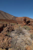 Parque nacional de las Cañadas,Tenerife, Gran Canaria, Spain