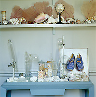 A collection of coral, sea fans, shells and antique glass specimen jars is displayed on a console table in the living room