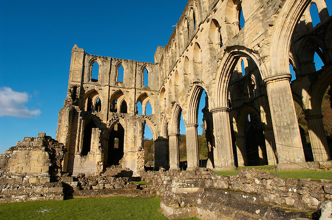 Rievaulx Abbey main church, side view. North Yorkshire, England