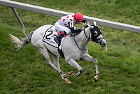 BALTIMORE, MD - MAY 20: World Approval  #2, ridden by Julien Leparoux, wins the Longines Dixie Stakes on Preakness Stakes Day at Pimlico Race Course on May 20, 2017 in Baltimore, Maryland.(Photo by Dan Heary/Eclipse Sportswire/Getty Images)