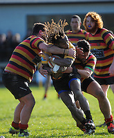150627 Wairarapa Bush Club Rugby - Greytown v Gladstone