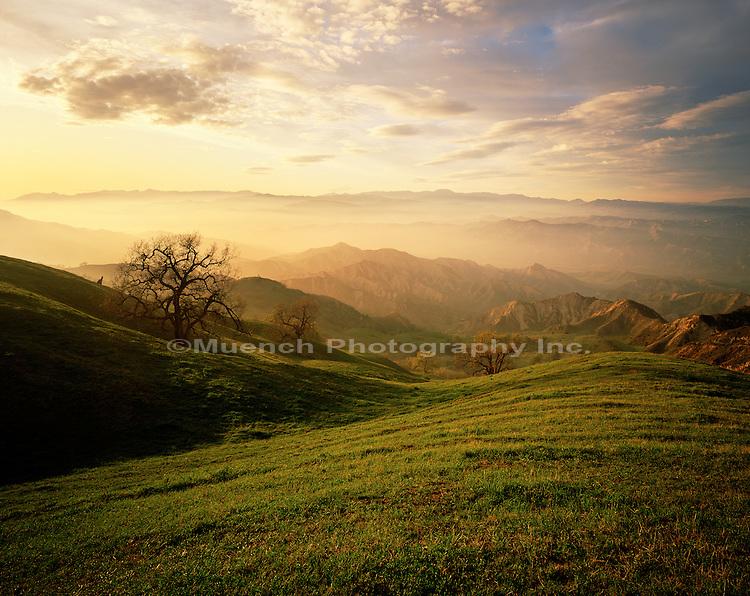 Fillmore Valley   CALIFORNIA
