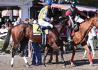 Dominus (no. 4), ridden by Julien Leparoux and trained by Todd Pletcher, wins the grade 2 Bernard Baruch Handicap for three year olds and upward on September 1, 2012 at Saratoga Race Track in Saratoga Springs, New York.  (Bob Mayberger/Eclipse Sportswire)