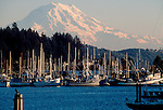 Mount Rainer, Puget Sound, Gig Harbor, Washington State, fishing boats, cormorant on a piling, Washington State, Pacific Northwest,.