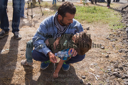 Illegal migrant holds his unconscious son because of fatigue and heat stroke near Roszke (about 174 km South of capital city Budapest), Hungary on September 07, 2015. ATTILA VOLGYI