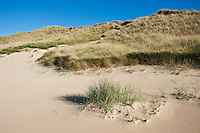 Sand dunes and dune grass, Isle of Harris, Scotland