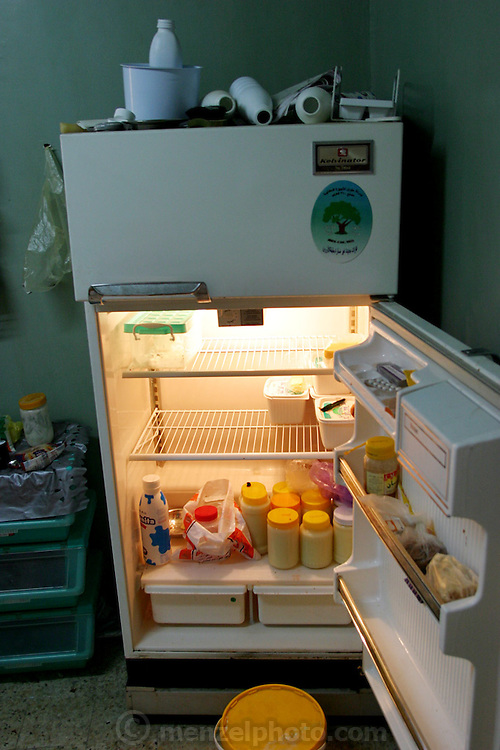 A refrigerator in a middle class home in Giza, Egypt. (Supporting image from the project Hungry Planet: What the World Eats.)