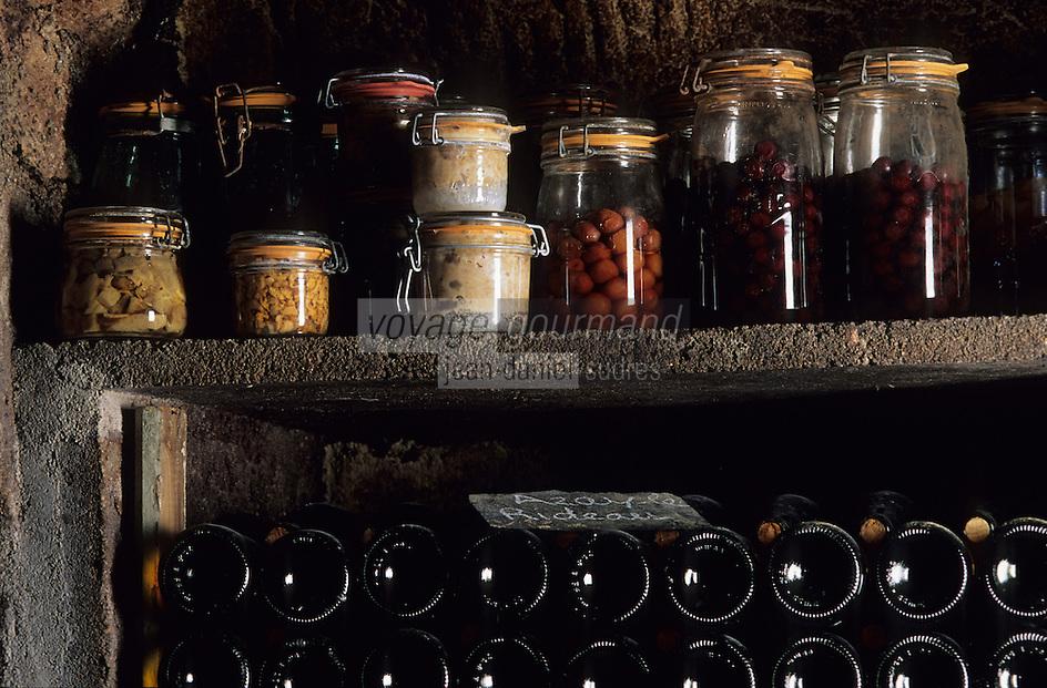 Europe/France/Centre/37/Indre-et-Loire/Azay-le-Rideau : Cave de Pascale Pibaleau - Les bouteilles de vin AOC Azay-le-Rideau et les conserves familiales