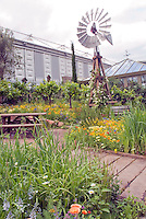 Wind power turbine in garden with rain barrel, conservatory, urban setting, plants, grapes, flowers, edibles