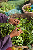VIETNAM, Hue, a woman removes the stem ends from her leafy green vegetables at a rural roadside market