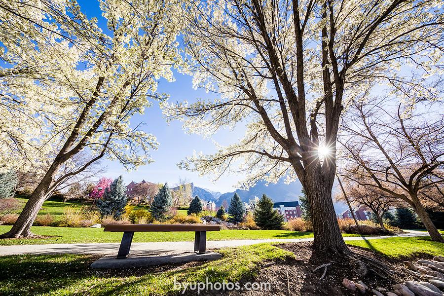 _RE_7155<br /> <br /> 1704-06 GCS Spring<br /> <br /> April 5, 2017<br /> <br /> Photography by Nate Edwards/BYU<br /> <br /> © BYU PHOTO 2016<br /> All Rights Reserved<br /> photo@byu.edu  (801)422-7322