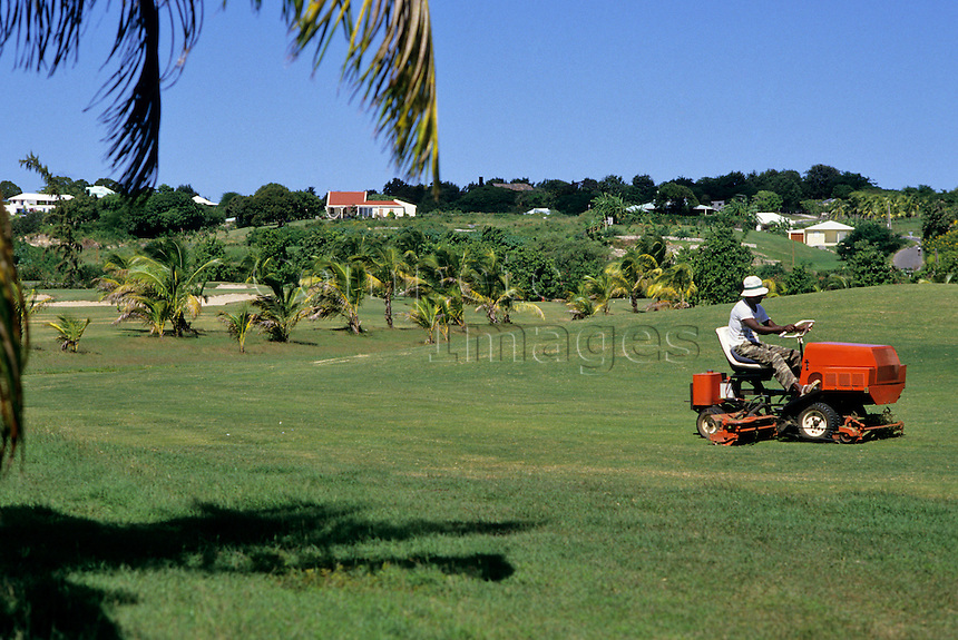 Greens keeper mowing the grass on a golf course