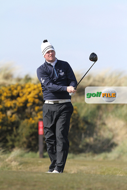 Andrew Hogan (Newlands) on the 7th tee during Round 2 of the West of Ireland Amateur Open Golf Championship 2013 at Co.Sligo Golf Club, Rosses Point, Co.Sligo. 30/03/2013...(Photo Jenny Matthews/www.golffile.ie)