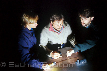 Researchers studying map in a State Forestry pine plantation at night to track owls. Whiporee State Forest, northern NSW