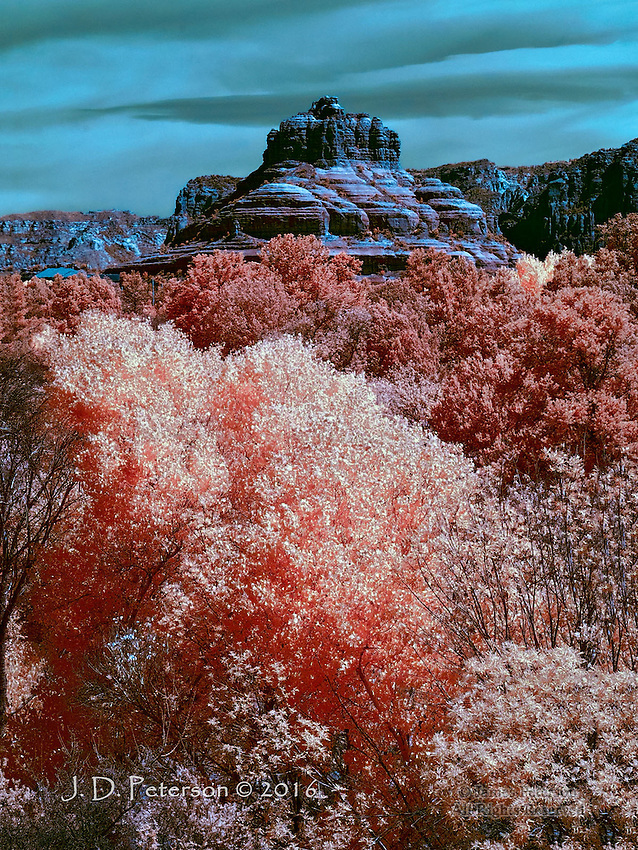 Bell Rock, South Face (Infrared)