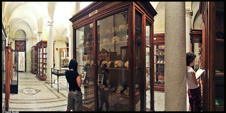 Museo di Anatomia. Immagine appartenente al progetto fotografico Vita da Museo di Marco Saroldi.