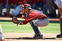Arizona Diamondbacks minor league catcher B.J. Lopez #3 during an instructional league game against the Los Angeles Angels at the Tempe Diablo Minor League Complex on October 1, 2012 in Tempe, Arizona.  (Mike Janes/Four Seam Images)