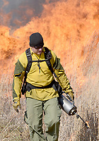 NWA Democrat-Gazette/DAVID GOTTSCHALK  Wes McKinney, burn boss with Wildland Habitat, uses a drip torch Monday, March 18, 2019, during a prescribed burn at the Woolsey Wet Prairie Sanctuary in Fayetteville. The prescribed burn serves as a vegetation management effort to maintain the plant community. Baseline monitoring identified 47 plant species at the site in 2005. At the end of the 2018 growing season, 482 plant species have been observed, 11 of which are species of special concern that are tracked by the Arkansas Natural Heritage Commission.