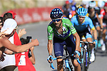 Green Jersey Alejandro Valverde (ESP) Movistar Team on the slopes of Sierra de la Alfaguara near the finish of Stage 4 of the La Vuelta 2018, running 162km from Velez-Malaga to Alfacar, Sierra de la Alfaguara, Andalucia, Spain. 28th August 2018.<br /> Picture: Eoin Clarke | Cyclefile<br /> <br /> <br /> All photos usage must carry mandatory copyright credit (&copy; Cyclefile | Eoin Clarke)