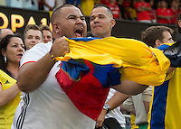 Action photo during the match Colombia vs Chile, corresponding to the semifinals of the America Cup Centenary 2016, at Soldier Field Stadium.<br /> <br /> Foto de accion durante el partido Colombia vs Chile correspondiente a la Semifinales de la Copa America Centenario 2016, en el Estadio Soldier Field, en la foto: Fans<br /> <br /> <br /> 22/06/2016/MEXSPORT/David Leah.