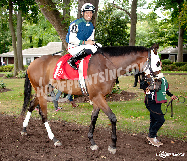 Dreamin of Bucks before The First State Dash at Delaware Park on 9/14/13