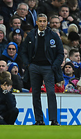 Brighton & Hove Albion manager Chris Hughton <br /> <br /> Photographer David Horton/CameraSport<br /> <br /> Emirates FA Cup Fourth Round - Brighton and Hove Albion v West Bromwich Albion - Saturday 26th January 2019 - The Amex Stadium - Brighton<br />  <br /> World Copyright © 2019 CameraSport. All rights reserved. 43 Linden Ave. Countesthorpe. Leicester. England. LE8 5PG - Tel: +44 (0) 116 277 4147 - admin@camerasport.com - www.camerasport.com