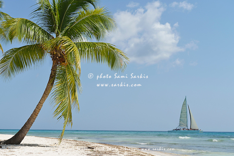 Sailboat passing by a pristine tropical beach, Saona Island, Dominican Republic