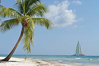 Sailboat passing by a pristine tropical beach, Saona Island, Dominican Republic