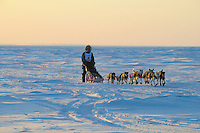 Iditarod musher Sven Hartmann along Bering Sea near Nome, Alaska.