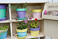 63821-200.19 Potting bench with containers and flowers in spring, Marion Co. IL