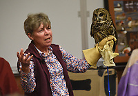 NWA Democrat-Gazette/FLIP PUTTHOFF <br /> WILDLIFE DOC<br /> Lynn Sciumbato, wildlife rehabilitator, shows a barred owl under her care, during her presentation on Saturday April 13 2019 at Hobbs State Park-Conservation Area. Sciumbato also brought a kestrel, turkey vulture, a great horned owl and talked about the habits of each bird during her program. Sciumbato operates Morning Star Wildlife Rehabilitation Center near Gravette. Her program was part of Earth Day events on Saturday at the park.