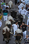 Participants run in front of Condes de la maze's bulls during the bull run of the San Sebastian de los Reyes Festival, near Madrid, on august 28, 2014 © Pedro ARMESTRE