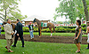 Pachattack before The Delaware Handicap (gr 2) at Delaware Park on 7/21/12