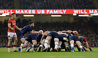 Scotland's Ali Price prepares to place the ball into the scrum<br /> <br /> Photographer Ian Cook/CameraSport<br /> <br /> Under Armour Series Autumn Internationals - Wales v Scotland - Saturday 3rd November 2018 - Principality Stadium - Cardiff<br /> <br /> World Copyright &copy; 2018 CameraSport. All rights reserved. 43 Linden Ave. Countesthorpe. Leicester. England. LE8 5PG - Tel: +44 (0) 116 277 4147 - admin@camerasport.com - www.camerasport.com