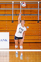 13 November 2010:  FIU's Jovana Bjelica (16) serves in the third set as the FIU Golden Panthers defeated the South Alabama Jaguars, 3-0 (25-12, 25-12, 25-20), at U.S Century Bank Arena in Miami, Florida.