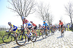 The peloton including Luxembourg National Champion Bob Jungels (LUX) Deceuninck-Quick Step climb Paddestraat during the 2019 E3 Harelbeke Binck Bank Classic 2019 running 203.9km from Harelbeke to Harelbeke, Belgium. 29th March 2019.<br /> Picture: Eoin Clarke | Cyclefile<br /> <br /> All photos usage must carry mandatory copyright credit (© Cyclefile | Eoin Clarke)