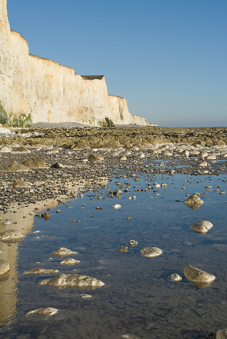 Low tide and white cliffs at Telscombe on the East Sussex coast, near Brighton. England 2008.
