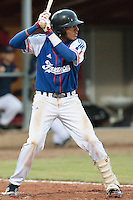 17 August 2010: Andy Paz Garriga of Team France is seen at bat during the Czech Republic 4-3 win over France, at the 2010 European Championship, under 21, in Brno, Czech Republic.