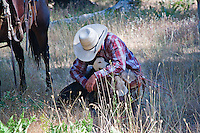 Western cowboy wearing red checked shirt and white cowboy hat, crouching with white cow dog in a moment of companionship, in a field of dry grass near a chestnut horse with western gear